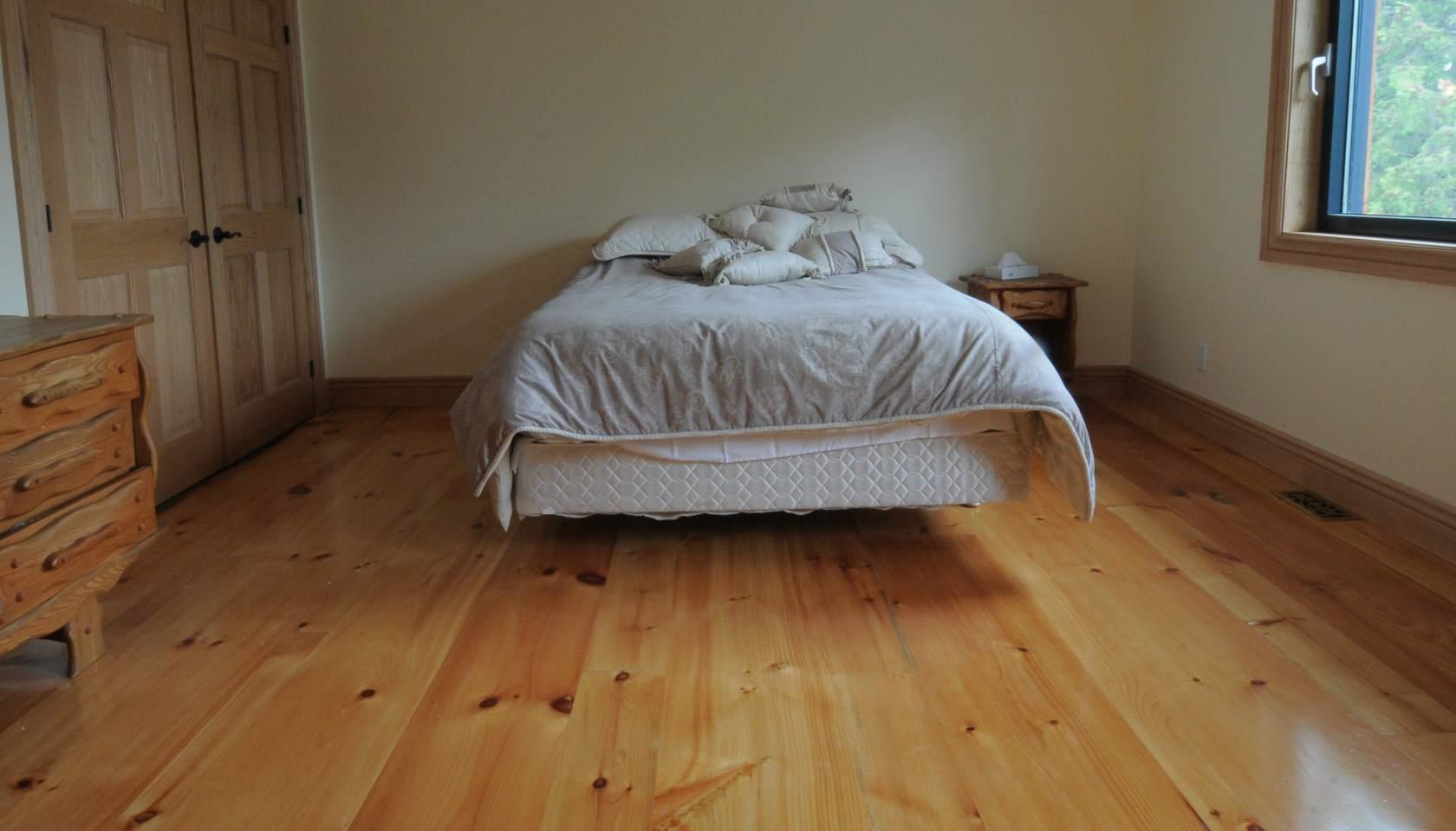 Plancher pin blanc - Punaise de parquet ...